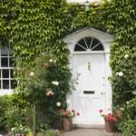Những khung cửa nhỏ cùng cửa sổ bên hiên nhà sẽ rất phù hợp với dạng dây leo với lá hình ngôi sao. Đặt một vài chậu hoa màu sắc bên cạnh, một không gian tuyệt đẹp dẫn lỗi vào nhà đã được mở ra trước mắt bạn